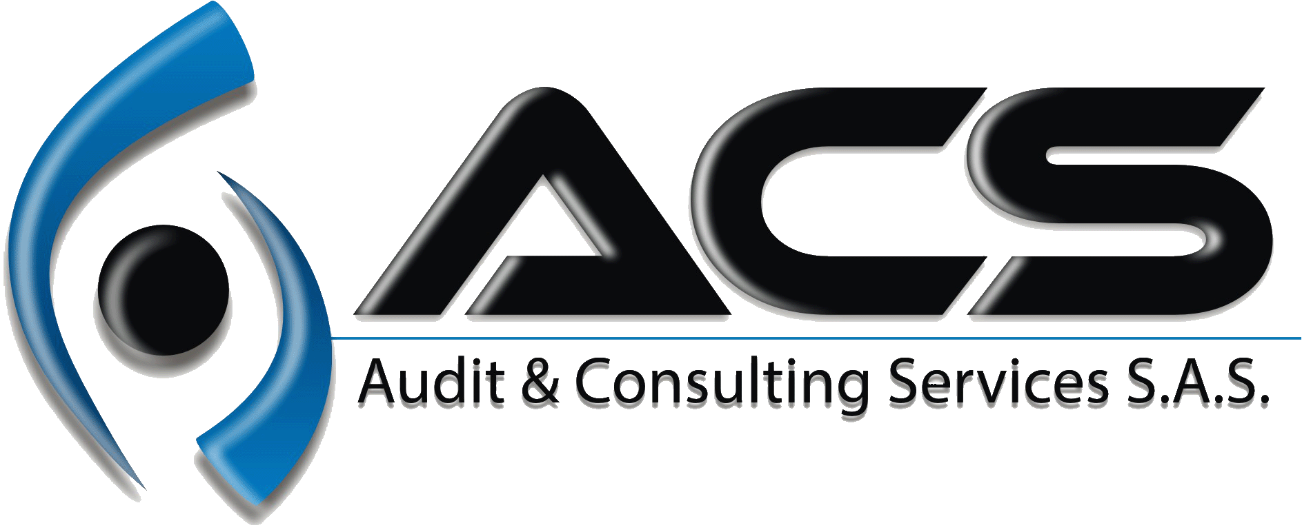 ACS Audit & Consulting Services
